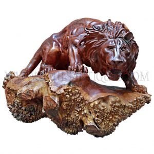 Burmese Burl-wood Carving of Attacking Lion