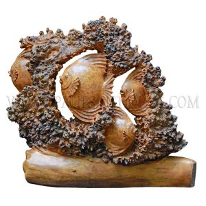 Burmese Burl Wood Carving of School of Sunfish