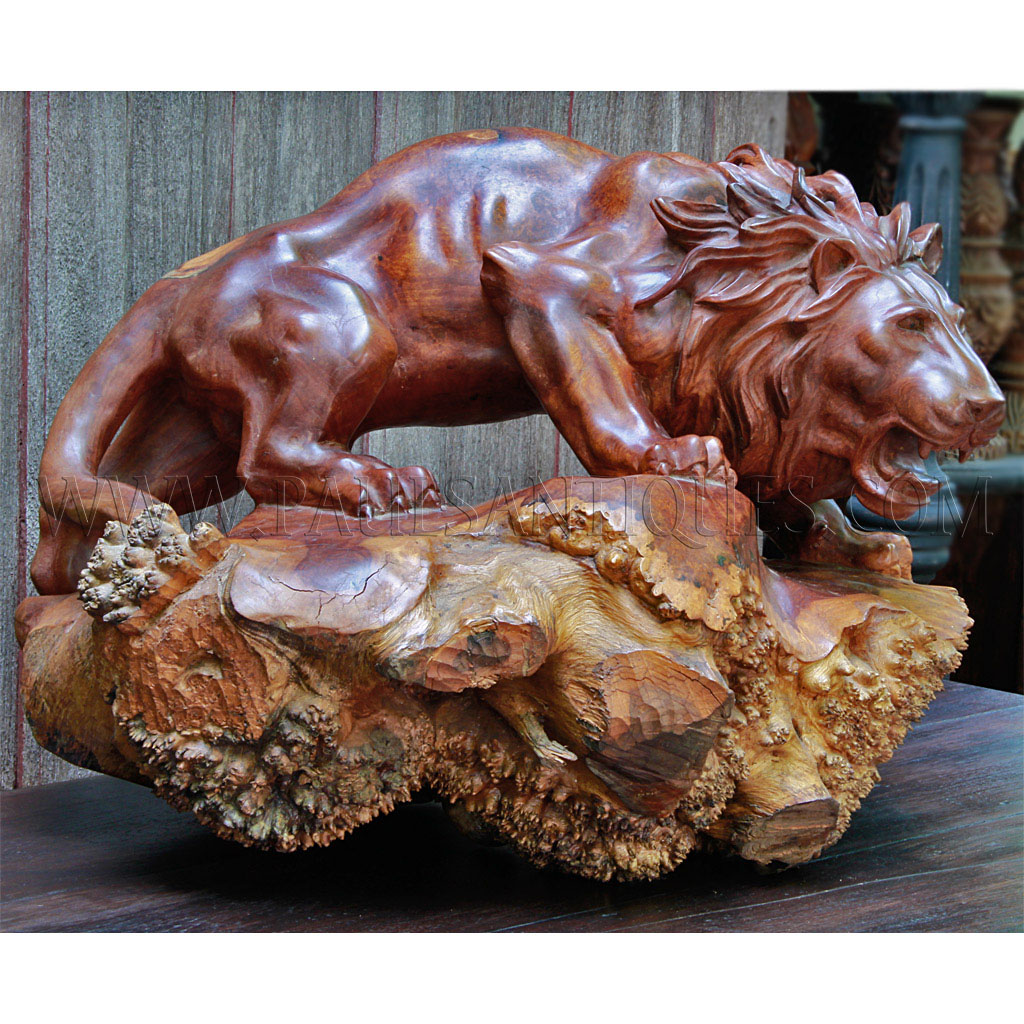 Burmese Burl Wood Carving Of Attacking Lion